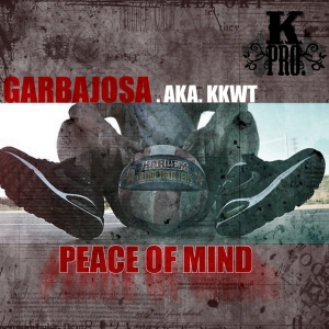 Descargar Garbajosa - Peace of mind